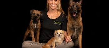 Pro Cane Spürhund: Wer sucht, der findet
